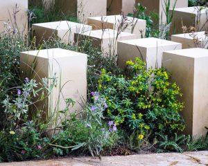 M & G garden detail